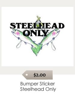 Bumper_Sticker