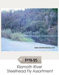 Klamath_River_Steelhead_Fly_Assortment